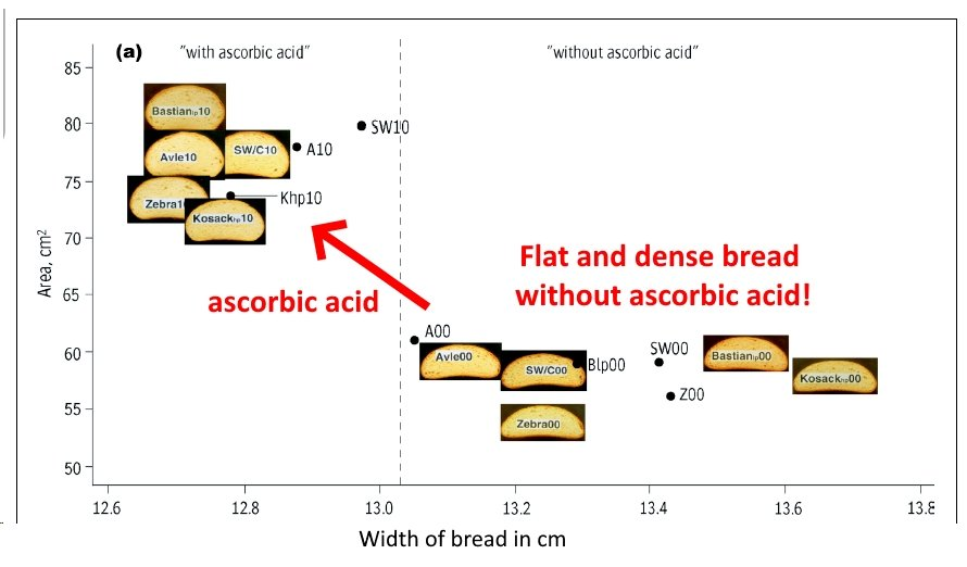 Effect of ascorbic acid on the loaf width and volume.